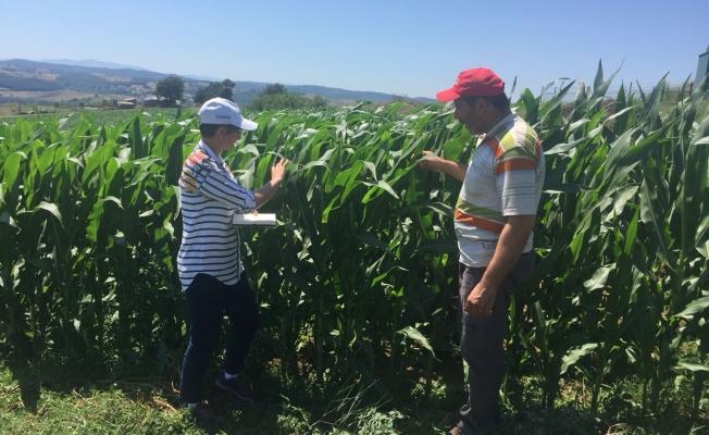 Çiftçilerin ürünlerini Büyükşehir kontrol ediyor