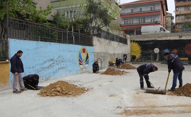 Çayırova'da okullara çınar fidanı