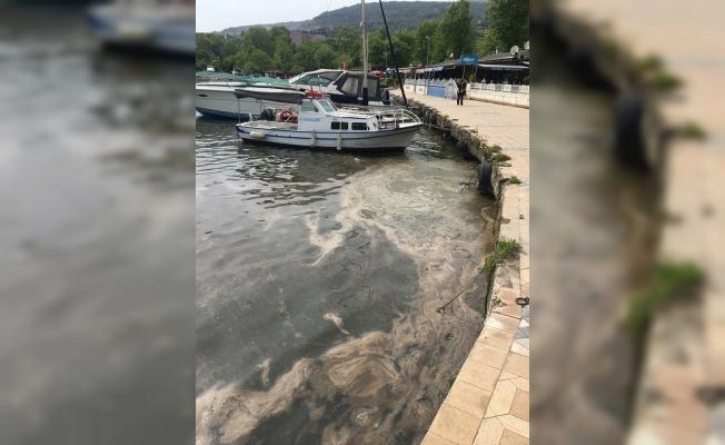 SON DAKİKA: Hereke'de deniz yağ kaplandı!