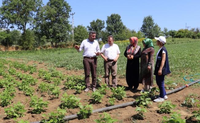 150 Çiftçiye yüzde 50 Hibeli Destek!