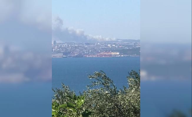 Gebze'de orman ve villalar yanıyor!