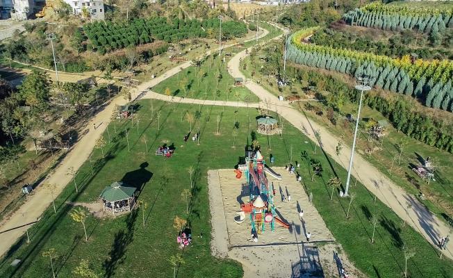 Kocaeli'de yeşil alan 23 milyon metrekareyi aştı