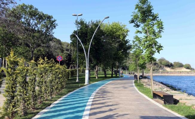 Darıca Sahil Parkı'na 50 bin çeşitli cinste fidan ekildi