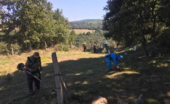 Taşköprü'de üç köyün ortak mezarlığı pırıl pırıl temizlendi