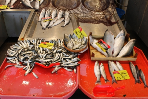 Kocaeli'de balık fiyatları zirveye koşuyor