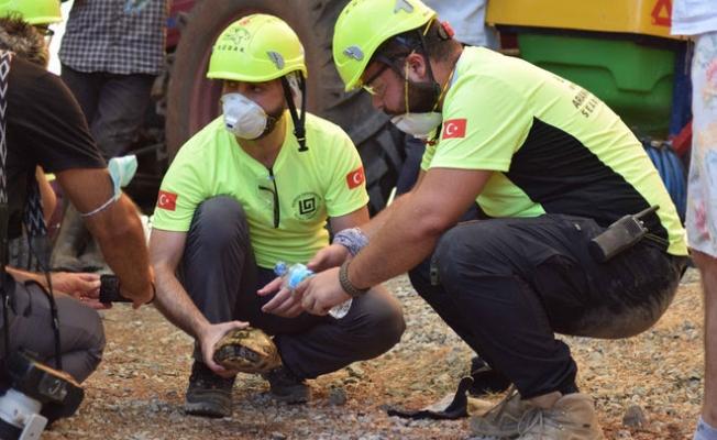 Üniversite öğrencileri destek için yangın bölgesine koştu