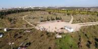 Dilovası'nda ormanlık alan Millet bahçesi olacak!