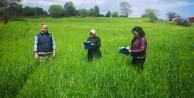 Büyükşehir'den  köylere tarım desteği!
