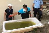 Sivrisinekle mücadele son hız devam ediyor